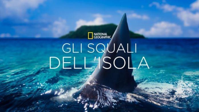 disney gli squali dell'isola